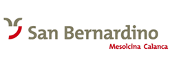 san_bernardino_logo_b